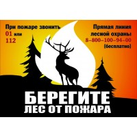 Плакат Берегите лес от пожара