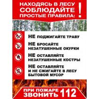 Плакат Правила поведения в лесу