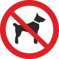 Р14 Запрещается вход (проход) с животными