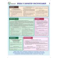 Организация обучения безопасности труда (Комплект из 2-плакатов)